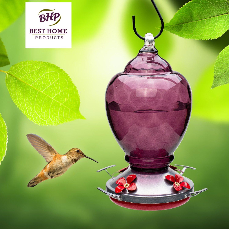 Blown Glass Hummingbird Feeder With Perch Almond Breeze